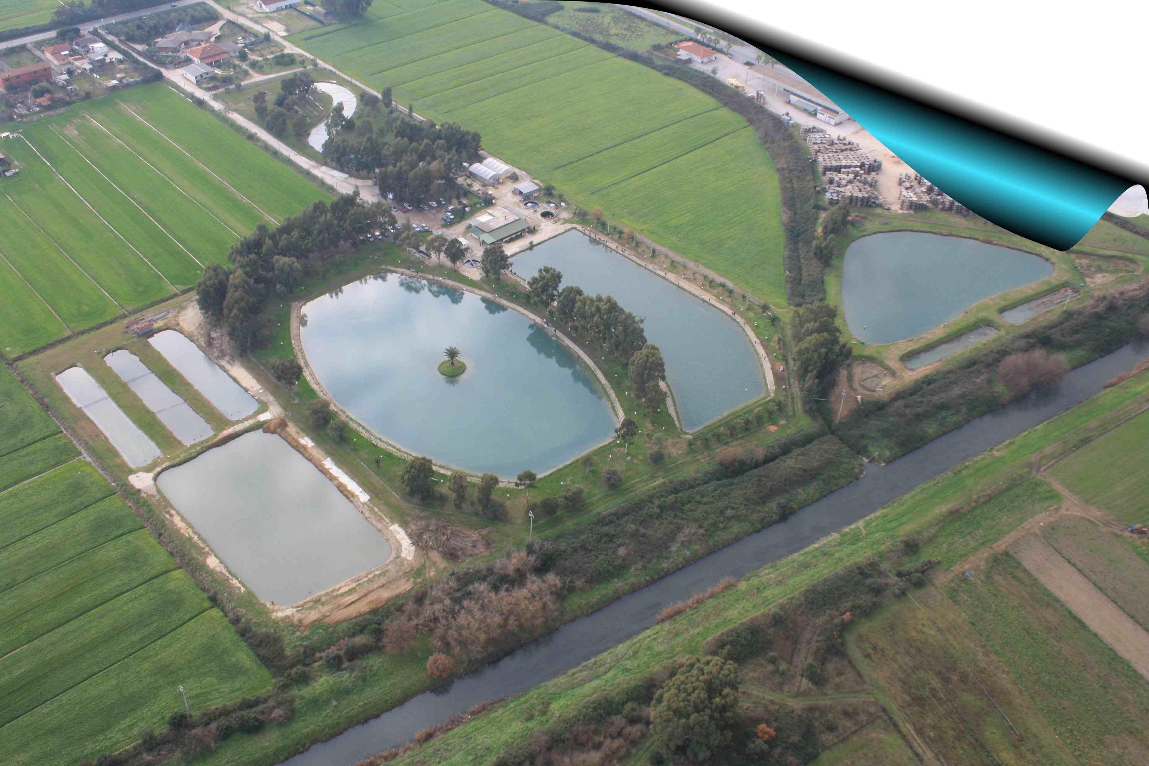 Lago smeraldo pesca sportiva e itticoltura a latina for Vendita pesci da laghetto online